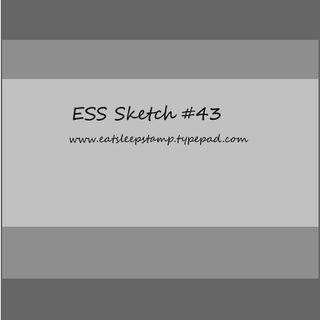 Ess sketch43